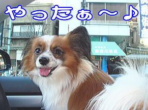 f0011845_035327.jpg