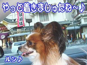 f0011845_045865.jpg