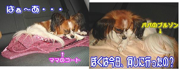 f0011845_084192.jpg