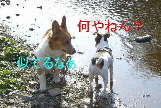 f0053952_20105287.jpg