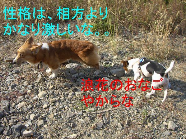 f0053952_20124954.jpg