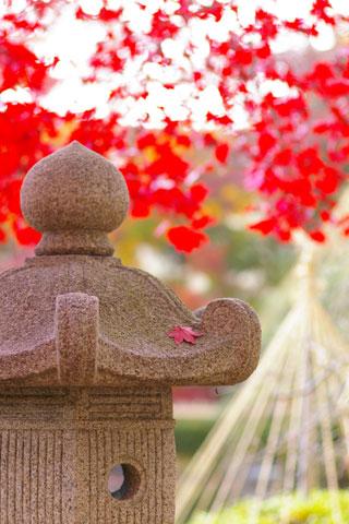 山形の紅葉_e0084756_13462460.jpg
