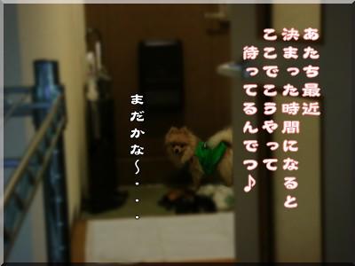 b0078073_2243403.jpg