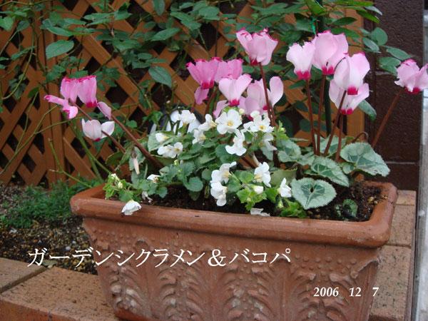 f0057006_15202683.jpg