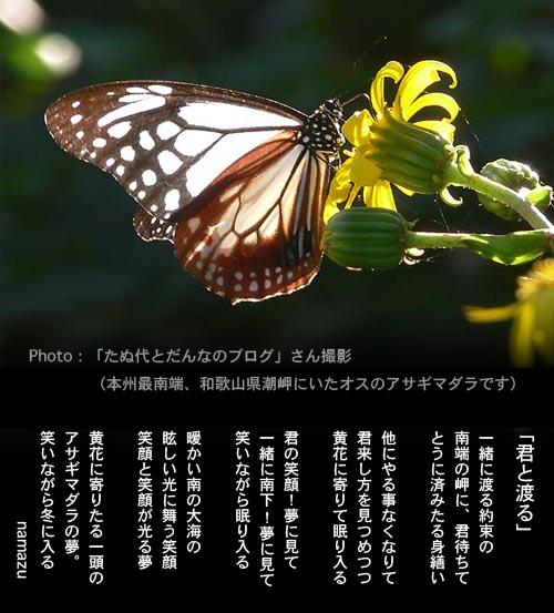 a0040522_161829.jpg