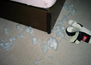 """ベッドのコーナー。グレーの絨毯の上に白い綿の塊が幾つも・・・・。犬の上半身の形をしたぬいぐるみ状のものが転がっています。"""""""