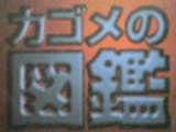 b0087245_15464239.jpg