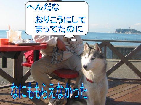 f0112407_164023.jpg