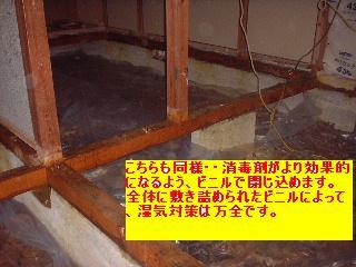 f0031037_18573263.jpg