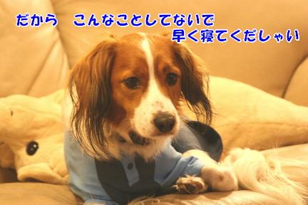 d0013149_0512197.jpg