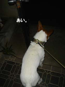 b0098652_022993.jpg