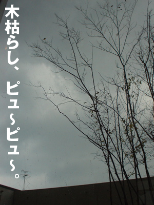 b0080632_205553100.jpg