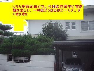 f0031037_19333544.jpg