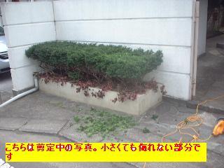 f0031037_19334392.jpg