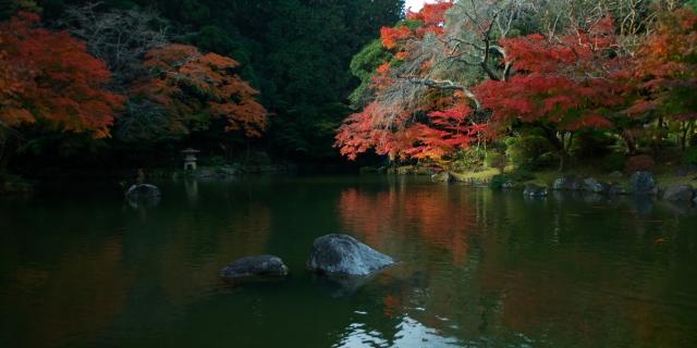 成田山公園_f0018464_13475933.jpg