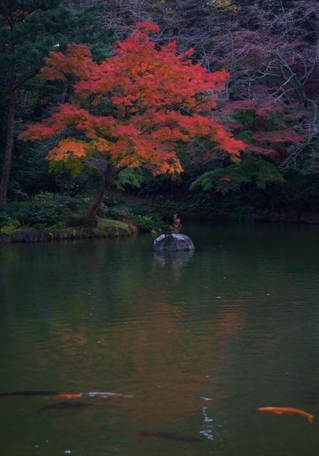 成田山公園_f0018464_1563533.jpg