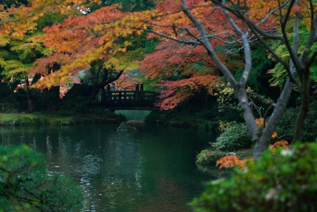 成田山公園_f0018464_1575638.jpg