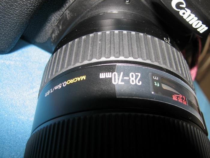 f0105478_1964032.jpg