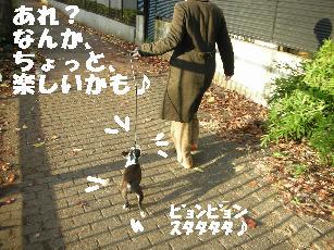 e0103831_20121565.jpg