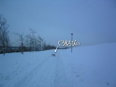 b0105157_2210968.jpg