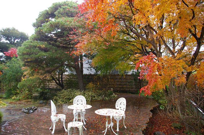 北鎌倉湧水ネットワークのこの1年(兼松邸で忘年会 12・9)_c0014967_2354863.jpg