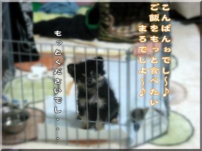 b0078073_23461880.jpg