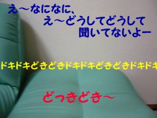 f0005727_15242775.jpg
