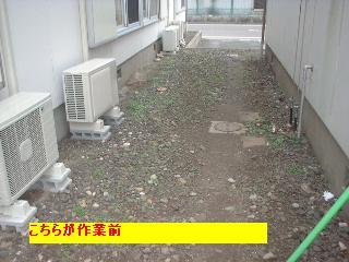f0031037_20503578.jpg
