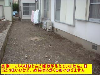 f0031037_2051511.jpg