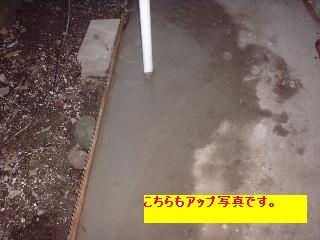 f0031037_2052132.jpg