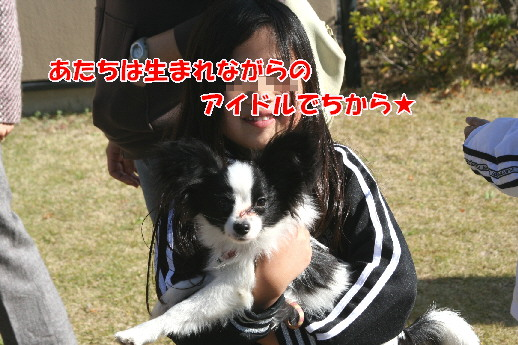 d0013149_081773.jpg
