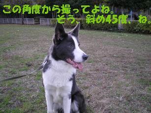 d0086564_17553089.jpg