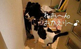 e0038378_1847523.jpg