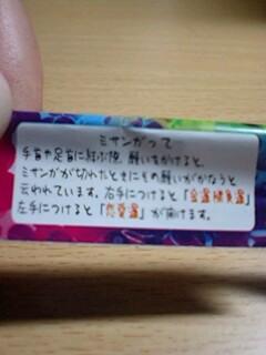 b0089483_3502727.jpg