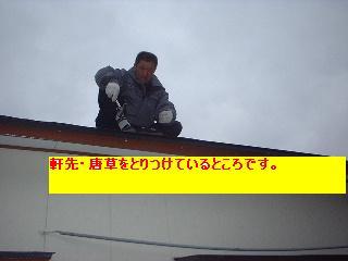 屋根工事_f0031037_19295650.jpg
