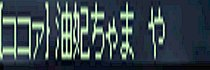 c0050383_4192564.jpg