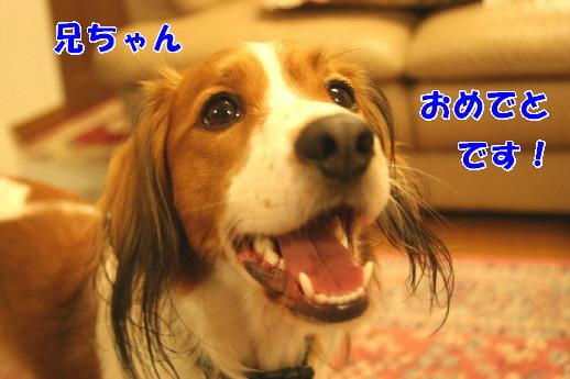 d0013149_0443819.jpg