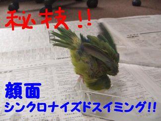 b0082757_0304269.jpg