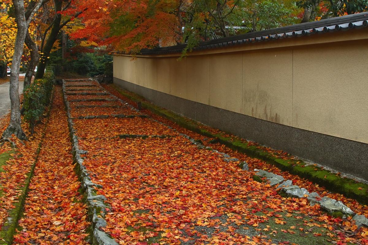 京都 嵯峨野 <嵐山> 紅葉 2_f0021869_9221579.jpg