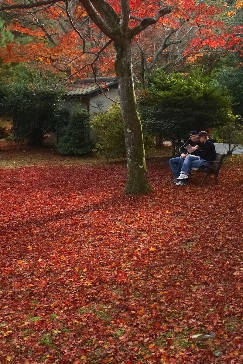 京都 嵯峨野 <嵐山> 紅葉 2_f0021869_9312851.jpg