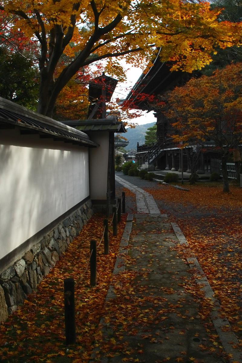 京都 嵯峨野 <嵐山> 紅葉 2_f0021869_9343830.jpg