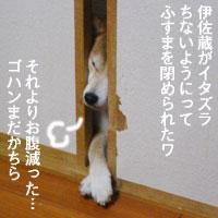 b0057675_13241640.jpg