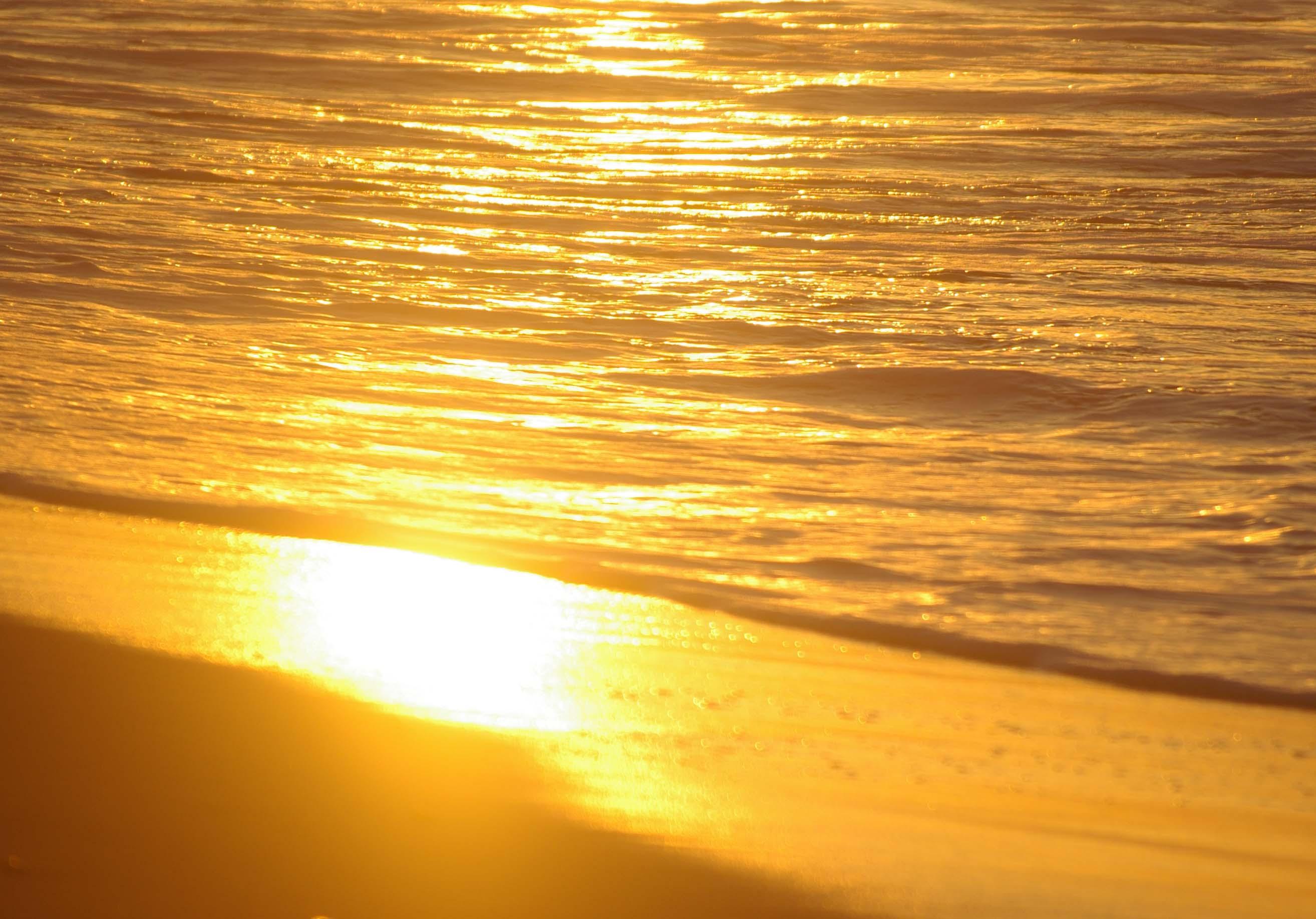 黄金色の浜辺_b0093088_621898.jpg