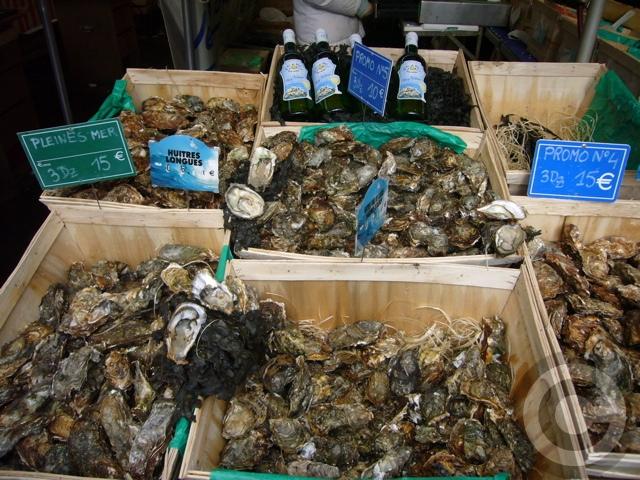 ■マルシェの牡蠣HUITRE(PARIS)_a0014299_5464826.jpg