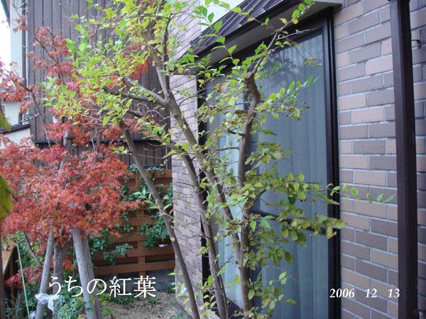 f0057006_147070.jpg