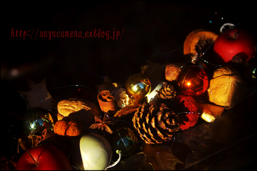 クリスマスの準備_f0100215_1205360.jpg