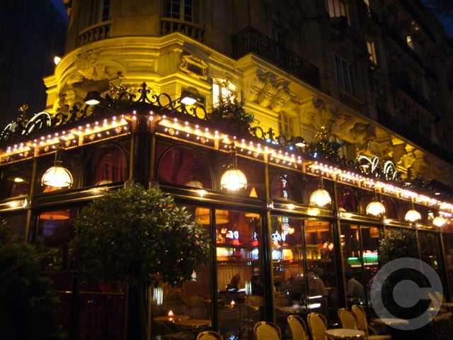 ■LE DOME(PARIS)_a0014299_2164623.jpg