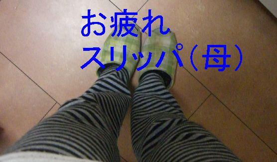 f0053952_1452944.jpg