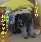 b0073589_245473.jpg