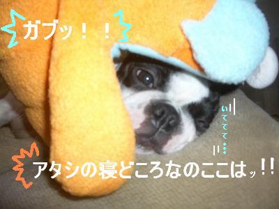 a0086698_20104151.jpg